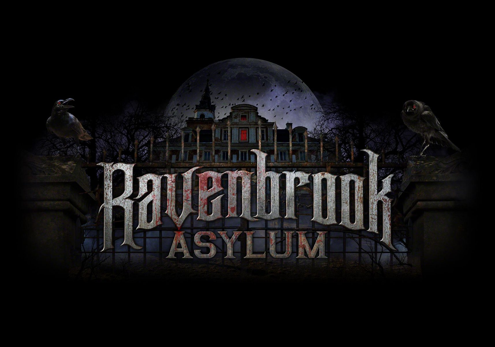 Ravenbrook Asylum Logo